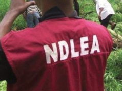NDLEA vows to nab suspected gunmen who killed its officer in Imo