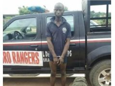 Farmer Arrested For Allegedly Killing Herdsman Whose Cow Grazed On His Farm In Oyo