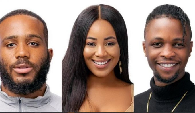 "BBNaija2020:""I'm Mentally Attracted To You And Physically Attracted To Kiddwaya' – Erica Tells Laycon (Videos)"