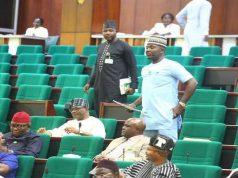 APC House Of Reps Member Files Motion To Dissolve SARS